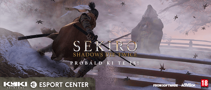 Sekiro: Shadows Die Twice launch parti