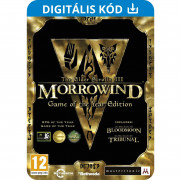The Elder Scrolls III: Morrowind Game Of The Year (PC) Letölthető