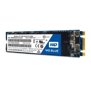 Western Digital Blue 500GB SSD (WDS500G1B0B) PC
