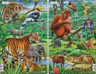 Larsen midi puzzle 30 db-os Ázsiai dzsungel H21 Ajándéktárgyak
