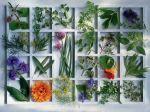 Puzzle 1500 - Zöldfüszerek Ajándéktárgyak