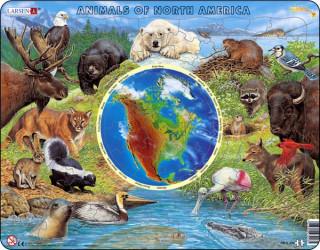 Észak-Amerika állatvilága AW3 - angol Ajándéktárgyak