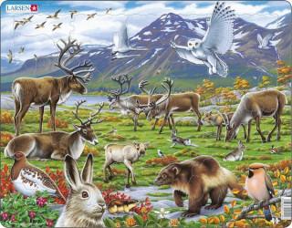 Larsen maxi puzzle 50 db-os Skandinávia állatvilága FH14 Ajándéktárgyak