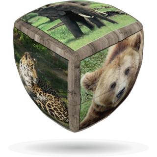 V-Cube 2x2 versenykocka, lekerekített, Vadállatok Ajándéktárgyak