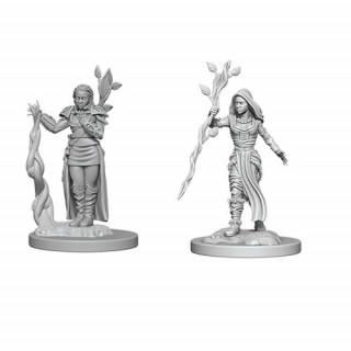 D&D Nolzur's Marvelous Miniatures: Female Human Druid Ajándéktárgyak