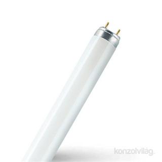Osram Star 19,1 W/830 T8 2000 lumen 1,5m LED fénycső PC