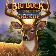 Big Buck Hunter Arcade (PC) Steam (Letölthető)
