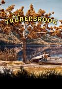 Truberbrook (PC) Steam (Letölthető)